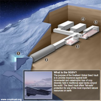 http://carthoris.free.fr/Images/Svalbard%20-%20Archi%2002.jpg
